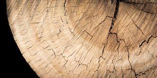 Wood texturbakgrund/Wood textur Royaltyfria Foton