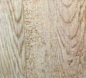 Wood texturbakgrundsyttersida med den gamla naturliga modellen royaltyfria foton