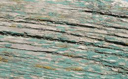 Wood texturbrunt, abstrakt begrepp Arkivbild