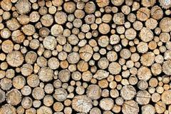 Wood texturcirkel Fotografering för Bildbyråer