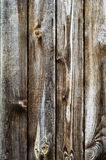 Wood texture, 05 Royalty Free Stock Photos