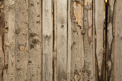 Wood texture. Wood wall texture with vertical lines Royalty Free Stock Photography