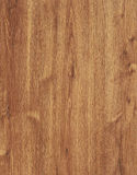 Wood texture. Oak tree wood texture, close-up Royalty Free Stock Images