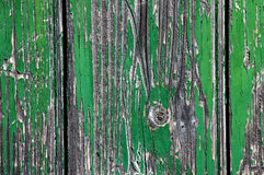 Wood Texture. Green Crackled Wood door texture royalty free stock images