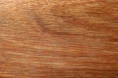 Wood texture. Closeup shot of Wood texture Royalty Free Stock Photos