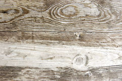 Wood texture. A detail of wood texture Royalty Free Stock Photos