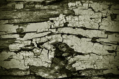 Wood texture. Grunge old retro Stock Photos