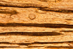 The Wood texture Royalty Free Stock Image