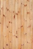 Wood texture. From pine slats royalty free stock image