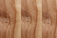 Wood texture. The Detail Texture of brown wood board Stock Photos