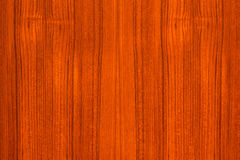 Wood Texture. Background for design Royalty Free Stock Images