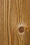 Wood texture. Under natural light Stock Photos