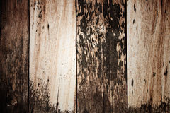 Wood texture. Used for background Royalty Free Stock Images
