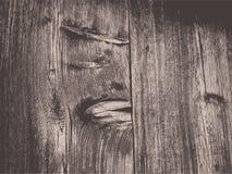 Wood texture. Illustration illustration Stock Photography