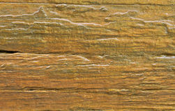 Wood texture. Detail of old wood texture Royalty Free Stock Photo