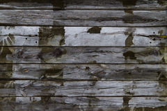 Wood texture. Old wood planks background texture Royalty Free Stock Photos