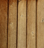 Wood texture. Texture of wood plates oriented verticaly Stock Images