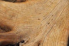 Free Wood Texture Stock Image - 50497851