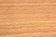 Wood texture. Wooden background royalty free stock images