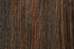 Wood texture. Texture of an oak wood board Stock Images