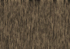 Wood texture. Natural wood texture, not a parquet Royalty Free Stock Photos