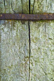 Wood texture. A closeup texture of a wooden pole with a  steel tape Stock Images