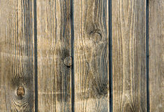 Wood texture. For nice backgrounds and textures Royalty Free Stock Photography