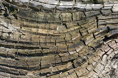 Wood texture abstract Royalty Free Stock Photos