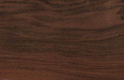Wood texture. For art and design Royalty Free Stock Photos