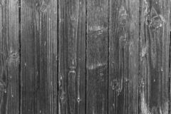 Wood texture as background. Wood texture closeup , wood structure , background stock photos
