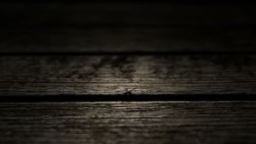 Wood texture backgroud. Pass the camera through the old and ancient surface. An excellent background introductory screensaver for thrillers, horror movies and stock footage