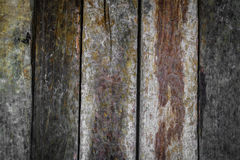 .Wood texture background Royalty Free Stock Images