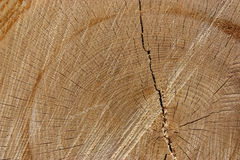 Wood texture. Background with a big crack Stock Images