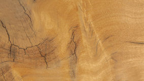 Wood texture. Texture of wood background closeup Stock Photography