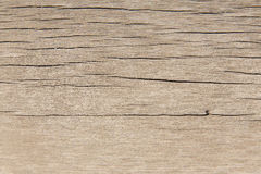 Wood texture. Texture of wood background closeup Stock Images