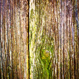 Old wood texture background Royalty Free Stock Photos