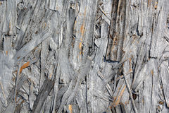 Wood Texture Background. Decorative grey wooden texture background royalty free stock images