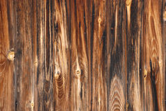 Wood-texture Stock Images