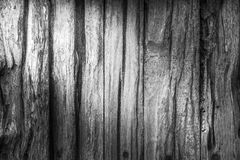 Wood texture background for design. Royalty Free Stock Image
