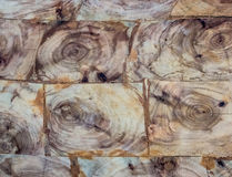 The wood texture background for design and texture Royalty Free Stock Photo