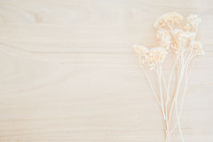 Wood texture background with dried flower decoration Royalty Free Stock Images