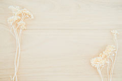 Wood texture background with dried flower decoration Royalty Free Stock Image