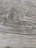 Wood texture background foto old wood nature. Wood texture background gray foto stock photography