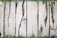 Wood texture background with green grass Stock Images