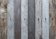 Wood texture background. Wood texture or background  Image Royalty Free Stock Photography