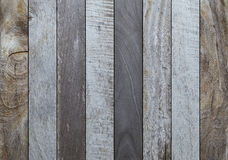 Wood texture background. Wood texture or background  Image Royalty Free Stock Image