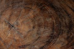 Wooden texture background image stock images