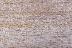 Wood texture or wood background for interior exterior decoration and industrial construction concept design. Wood motifs that occurs natural Stock Photography