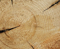 Wood texture background Royalty Free Stock Photography