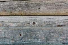 Wood Texture Background. Natural wood and lumber stock photo